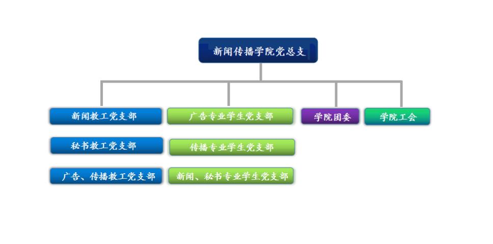 传播公司组织结构图